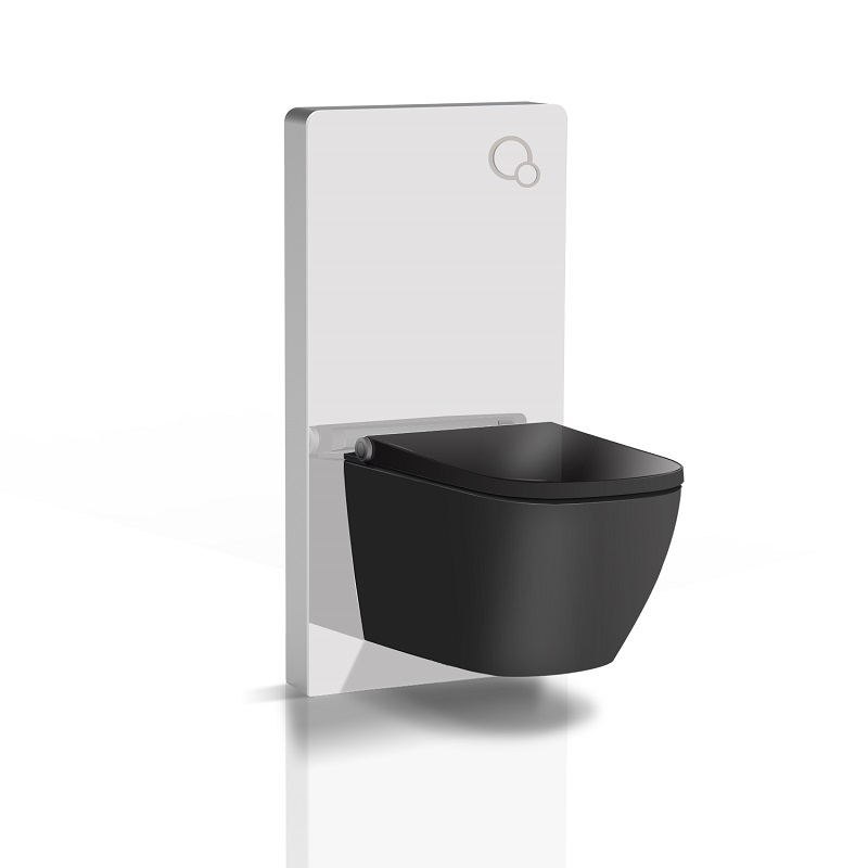 bidet seat with cabinet cistern